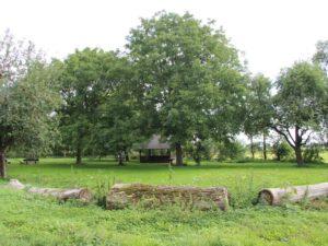 Grillhütte Berstadt