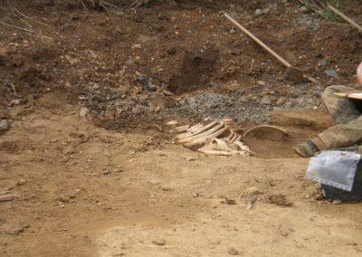 Ausgrabung 2006 - Gräberfeld der Merowinger