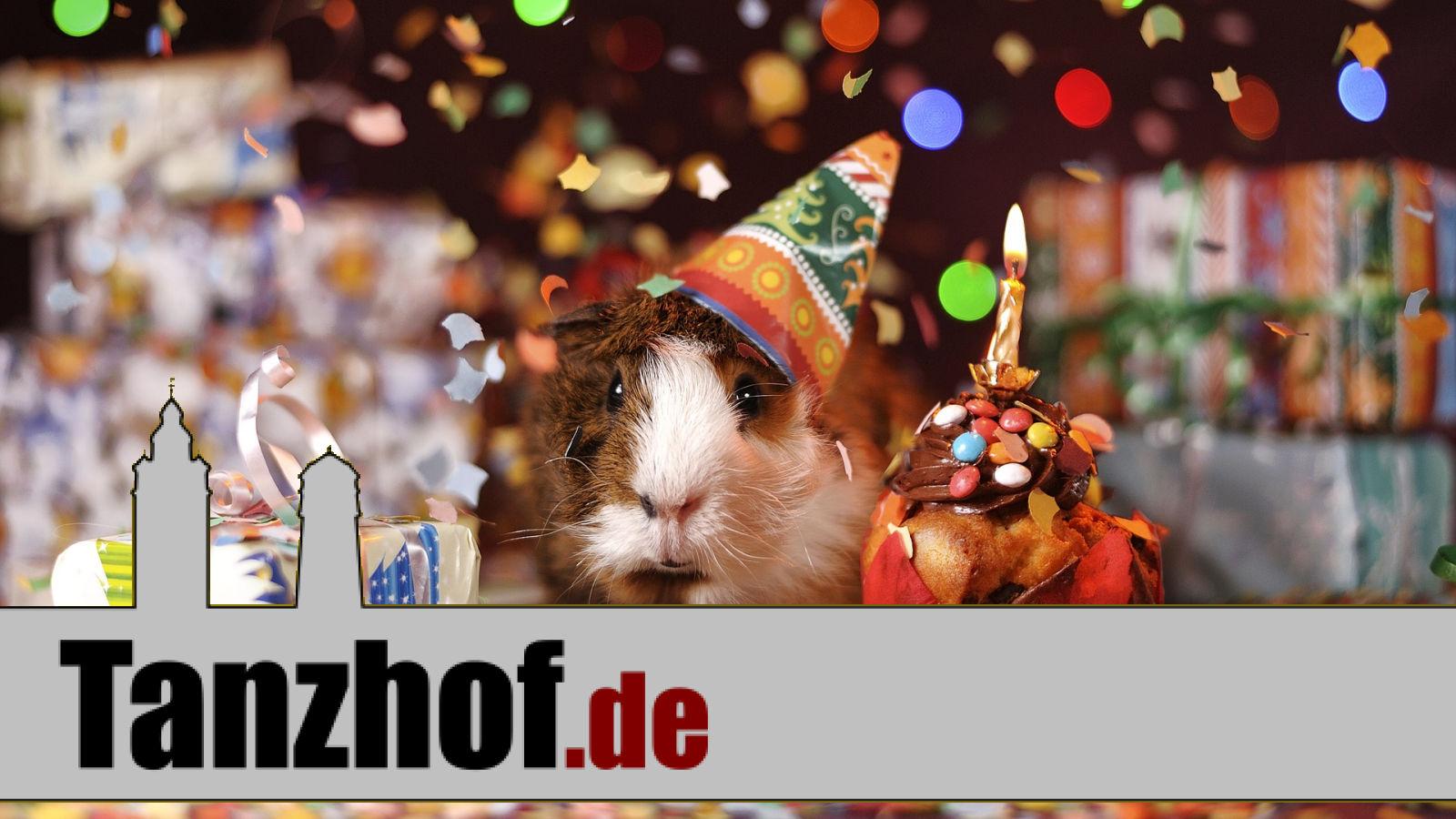 Tanzhof.de feiert Geburtstag